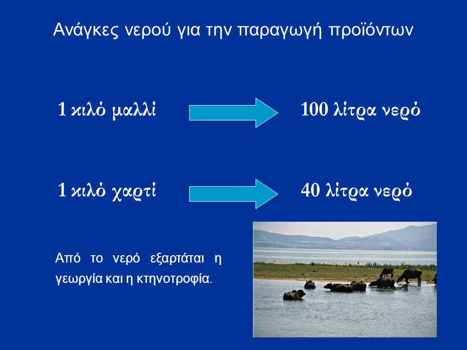 1 κιλό μαλλί100 λίτρα νερό 1 κιλό χαρτί40 λίτρα νερό Ανάγκες νερού για την παραγωγή προϊόντων Από το νερό εξαρτάται η γεωργία και η κτηνοτροφία.