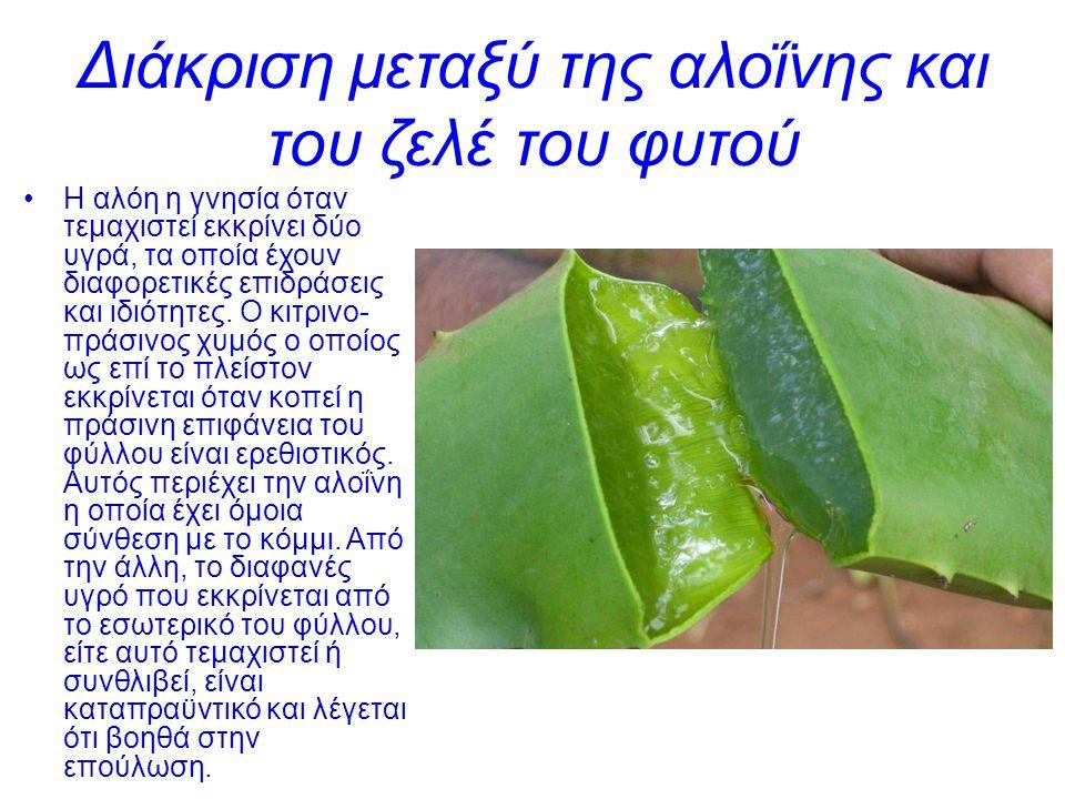 Διάκριση μεταξύ της αλοΐνης και του ζελέ του φυτού Η αλόη η γνησία όταν τεμαχιστεί εκκρίνει δύο υγρά, τα οποία έχουν διαφορετικές επιδράσεις και ιδιότ