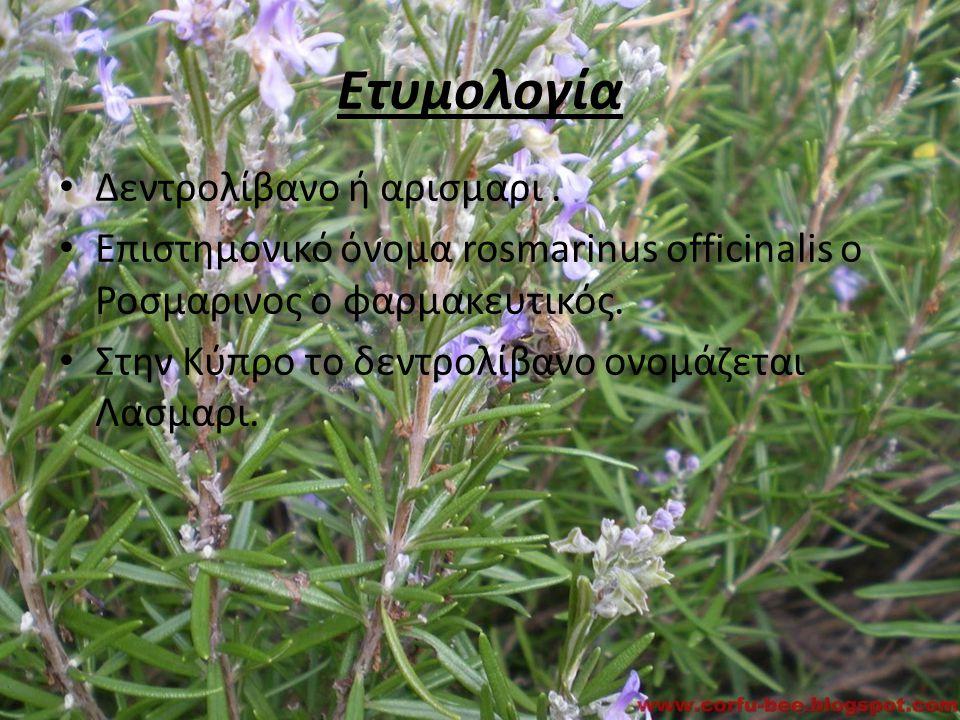 Ετυμολογία Δεντρολίβανο ή αρισμαρι. Επιστημονικό όνομα rosmarinus officinalis o Ροσμαρινος ο φαρμακευτικός. Στην Κύπρο το δεντρολίβανο ονομάζεται Λασμ