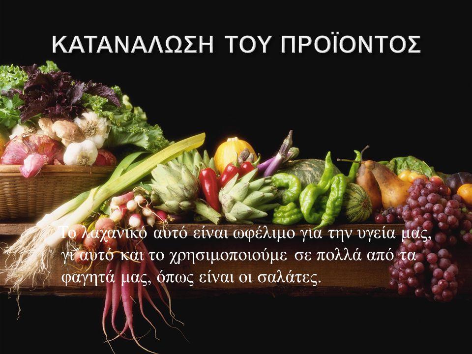 Το λαχανικό αυτό είναι ωφέλιμο για την υγεία μας, γι΄αυτό και το χρησιμοποιούμε σε πολλά από τα φαγητά μας, όπως είναι οι σαλάτες.