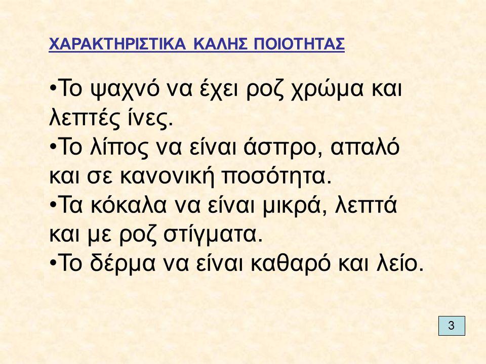 5. ΚΟΙΛΙΑ ΚΑΠΝΙΣΤΟ ΜΠΕΙΚΟΝ ΛΟΥΚΑΝΙΚΑ ΓΕΜΙΣΤΟ 9
