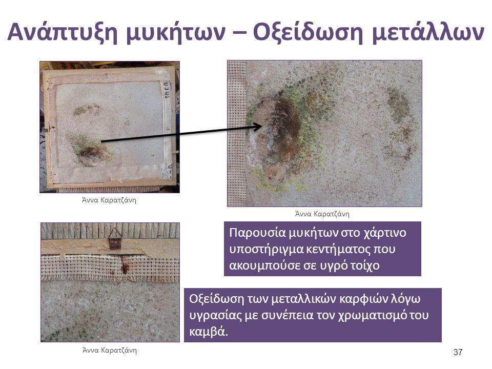 Ανάπτυξη μυκήτων – Oξείδωση μετάλλων Άννα Καρατζάνη Παρουσία μυκήτων στο χάρτινο υποστήριγμα κεντήματος που ακουμπούσε σε υγρό τοίχο Οξείδωση των μετα