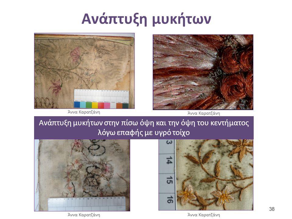 Ανάπτυξη μυκήτων Ανάπτυξη μυκήτων στην πίσω όψη και την όψη του κεντήματος λόγω επαφής με υγρό τοίχο Άννα Καρατζάνη 38