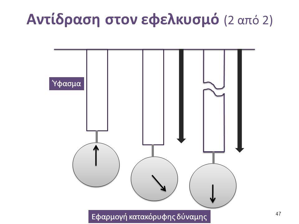Αντίδραση στον εφελκυσμό (2 από 2) Εφαρμογή κατακόρυφης δύναμης Ύφασμα 47