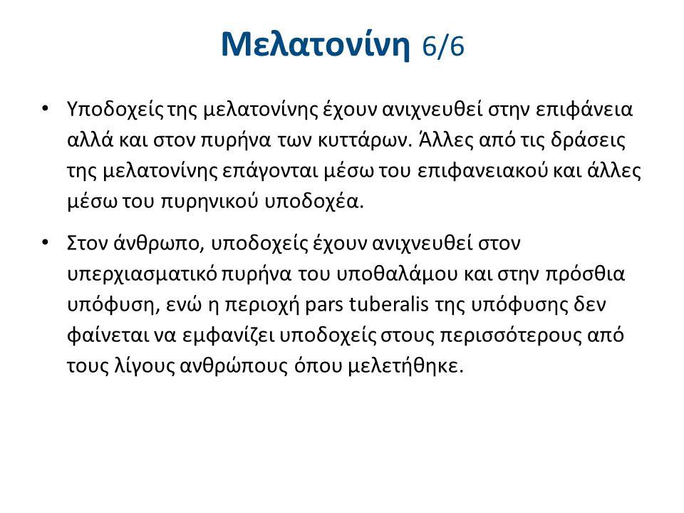 Μελατονίνη 6/6 Υποδοχείς της μελατονίνης έχουν ανιχνευθεί στην επιφάνεια αλλά και στον πυρήνα των κυττάρων. Άλλες από τις δράσεις της μελατονίνης επάγ
