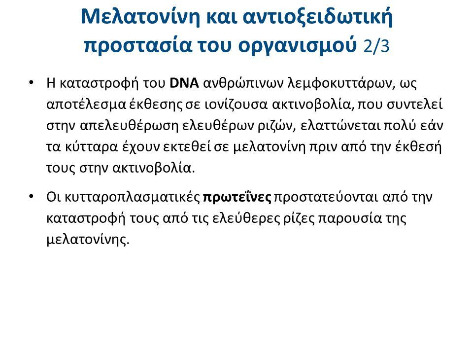 Μελατονίνη και αντιοξειδωτική προστασία του οργανισμού 2/3 Η καταστροφή του DNA ανθρώπινων λεμφοκυττάρων, ως αποτέλεσμα έκθεσης σε ιονίζουσα ακτινοβολ
