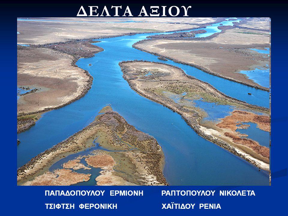 Η ετήσια παραγωγή εκτιμάται σε περίπου 30.000 τόνους μύδια, που αποτελεί και το 80 - 85% της ελληνικής παραγωγής.