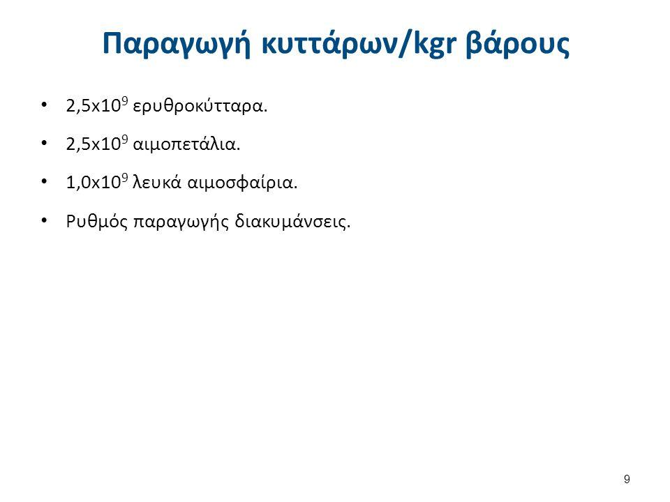 Παραγωγή κυττάρων/kgr βάρους 2,5x10 9 ερυθροκύτταρα. 2,5x10 9 αιμοπετάλια. 1,0x10 9 λευκά αιμοσφαίρια. Ρυθμός παραγωγής διακυμάνσεις. 9
