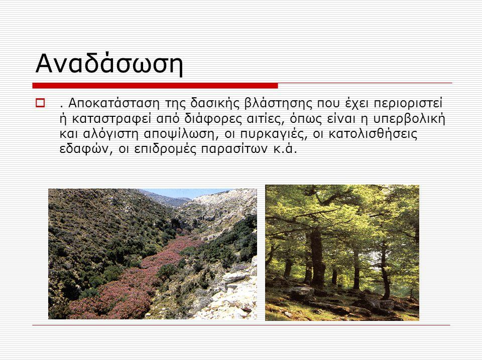 Αναδάσωση . Αποκατάσταση της δασικής βλάστησης που έχει περιοριστεί ή καταστραφεί από διάφορες αιτίες, όπως είναι η υπερβολική και αλόγιστη αποψίλωση