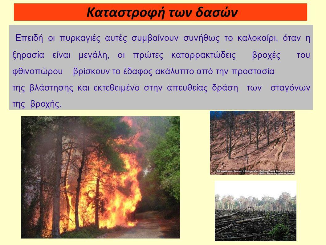 Καταστροφή των δασών Επειδή οι πυρκαγιές αυτές συμβαίνουν συνήθως το καλοκαίρι, όταν η ξηρασία είναι μεγάλη, οι πρώτες καταρρακτώδεις βροχές του φθινο