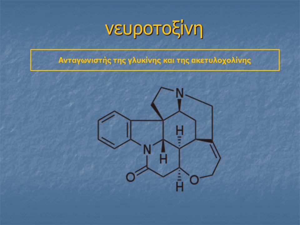 νευροτοξίνη Ανταγωνιστής της γλυκίνης και της ακετυλοχολίνης