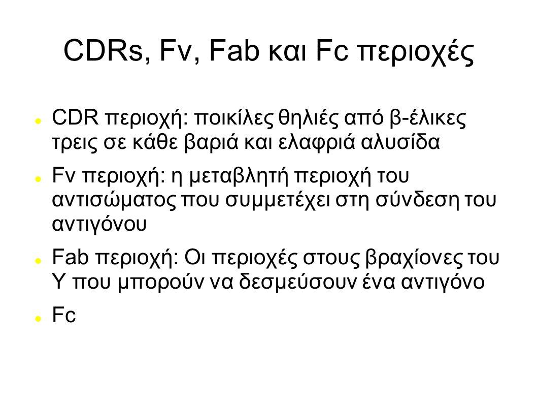CDRs, Fv, Fab και Fc περιοχές CDR περιοχή: ποικίλες θηλιές από β-έλικες τρεις σε κάθε βαριά και ελαφριά αλυσίδα Fv περιοχή: η μεταβλητή περιοχή του αν