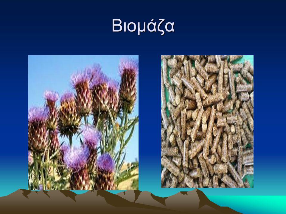 Βιομάζα- Βιοκαύσιμο Βιομάζα είναι κάθε οργανική ύλη (οτιδήποτε ήταν κάποτε ζωντανό) και αποτελεί το πιο υποσχόμενο απόθεμα της γης.