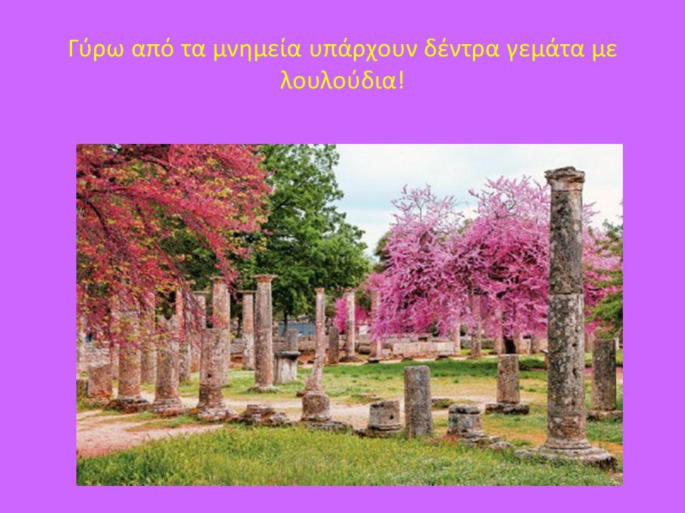 Γύρω από τα μνημεία υπάρχουν δέντρα γεμάτα με λουλούδια!