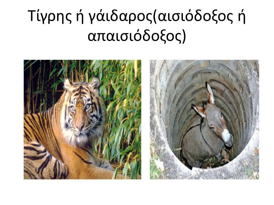 Τίγρης ή γάιδαρος(αισιόδοξος ή απαισιόδοξος) Δεν έχω πολλές γνώσεις για τα παιδιά με ΕΕΑ αλλά θα προσπαθήσω και θα τα καταφέρω.