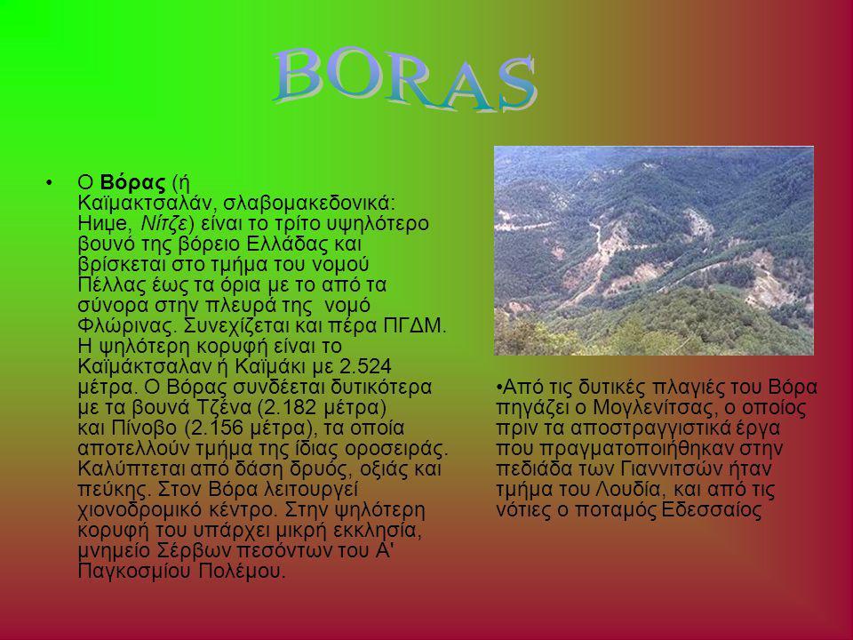 Ο Βόρας (ή Καϊμακτσαλάν, σλαβομακεδονικά: Ниџе, Νίτζε) είναι το τρίτο υψηλότερο βουνό της βόρειο Ελλάδας και βρίσκεται στο τμήμα του νομού Πέλλας έως τα όρια με το από τα σύνορα στην πλευρά της νομό Φλώρινας.