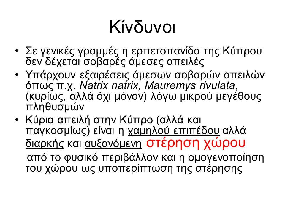Κίνδυνοι Σε γενικές γραμμές η ερπετοπανίδα της Κύπρου δεν δέχεται σοβαρές άμεσες απειλές Υπάρχουν εξαιρέσεις άμεσων σοβαρών απειλών όπως π.χ. Natrix n