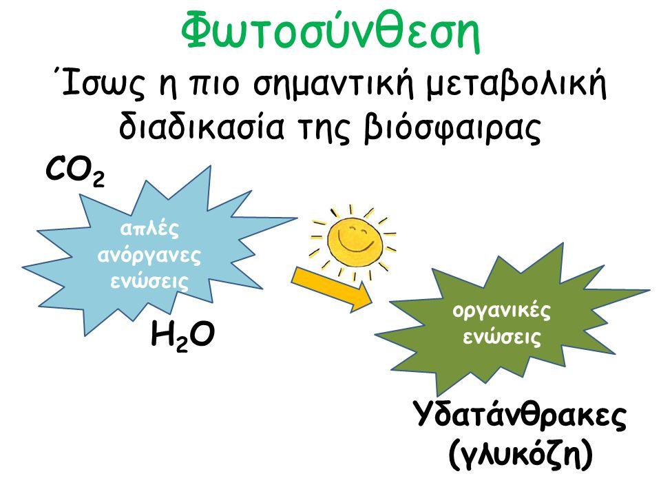 Φωτοσύνθεση Ίσως η πιο σημαντική μεταβολική διαδικασία της βιόσφαιρας απλές ανόργανες ενώσεις CO 2 H2OH2O οργανικές ενώσεις Υδατάνθρακες (γλυκόζη)