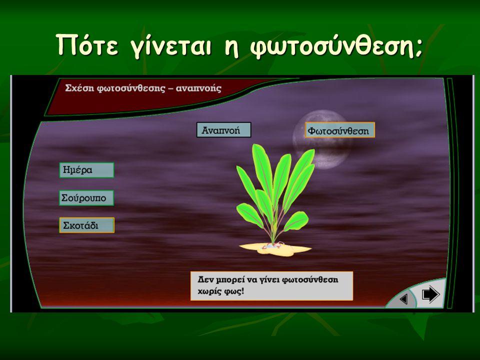 Τι συμβαίνει την ημέρα; αναπνοήφωτοσύνθεση Η φωτοσύνθεση υπερτερεί της αναπνοής, άρα έχουμε έντονη παραγωγή οξυγόνου