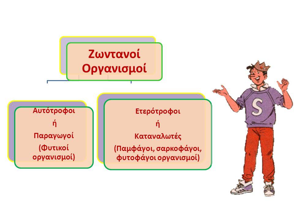 Ζωντανοί Οργανισμοί Αυτότροφοι ή Παραγωγοί (Φυτικοί οργανισμοί) Ετερότροφοι ή Καταναλωτές (Παμφάγοι, σαρκοφάγοι, φυτοφάγοι οργανισμοί)