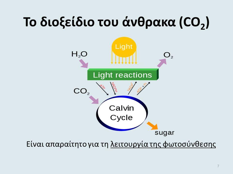 Το διοξείδιο του άνθρακα (CO 2 ) Είναι απαραίτητο για τη λειτουργία της φωτοσύνθεσης 7