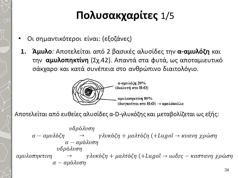 Πολυσακχαρίτες 1/5 Οι σημαντικότεροι είναι: (εξοζάνες) 1.Άμυλο: Αποτελείται από 2 βασικές αλυσίδες την α-αμυλόζη και την αμυλοπηκτίνη (Σχ.42). Απαντά