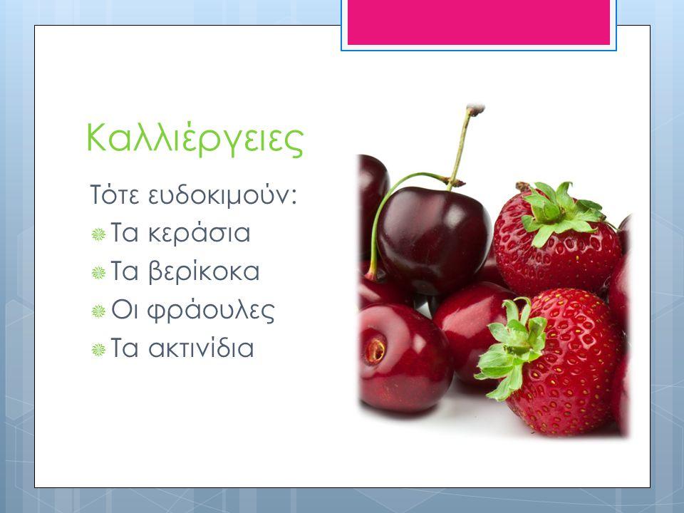 Καλλιέργειες Τότε ευδοκιμούν:  Τα κεράσια  Τα βερίκοκα  Οι φράουλες  Τα ακτινίδια