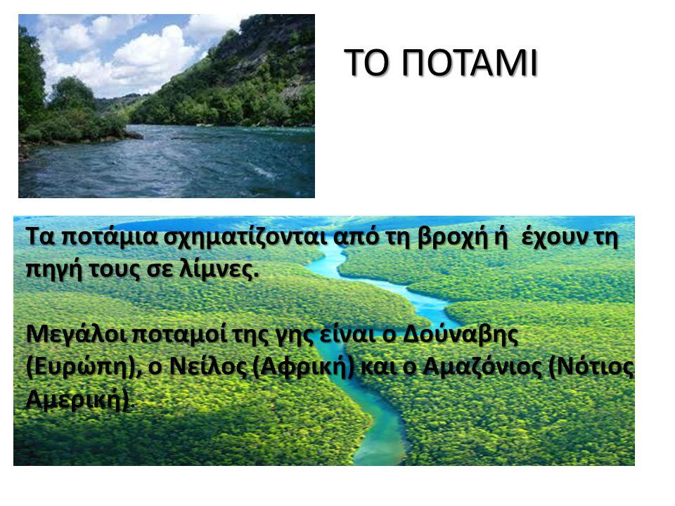 ΤΟ ΠΟΤΑΜΙ Τα ποτάμια σχηματίζονται από τη βροχή ή έχουν τη πηγή τους σε λίμνες. Μεγάλοι ποταμοί της γης είναι ο Δούναβης (Ευρώπη), ο Νείλος (Αφρική) κ