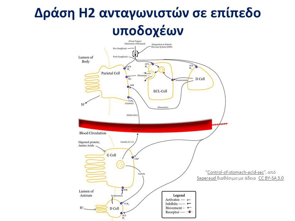 """Δράση Η2 ανταγωνιστών σε επίπεδο υποδοχέων """"Control-of-stomach-acid-sec"""", από Saperaud διαθέσιμο με άδεια CC BY-SA 3.0Control-of-stomach-acid-sec Sape"""