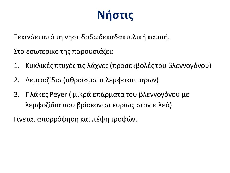 Νήστις Ξεκινάει από τη νηστιδοδωδεκαδακτυλική καμπή. Στο εσωτερικό της παρουσιάζει: 1.Κυκλικές πτυχές τις λάχνες (προσεκβολές του βλεννογόνου) 2.Λεμφο