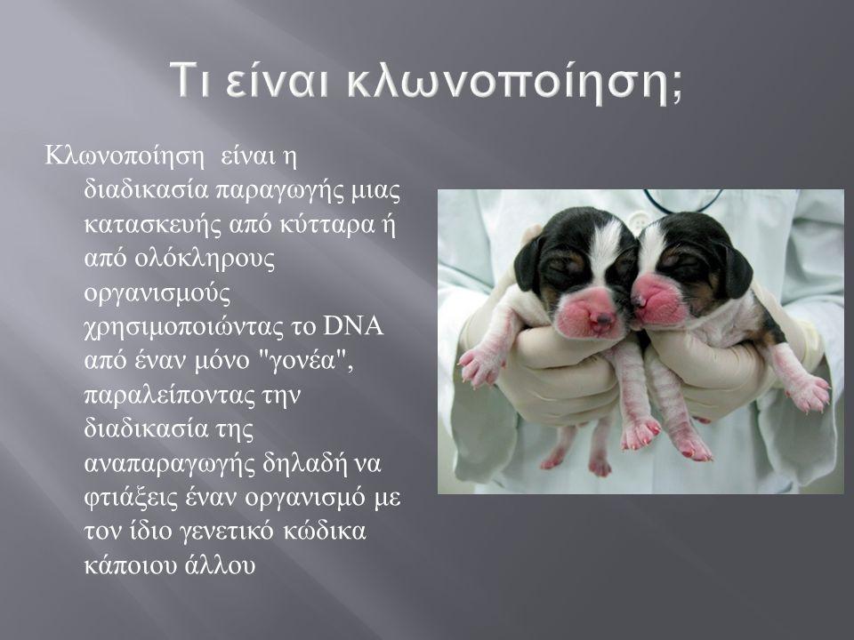 Η πιο συνηθισμένη εφαρμογή ονομάζεται πυρηνική μεταφορά και παίρνει το DNA ( γενετικό οικοδόμημα ) από ένα κύτταρο και το τοποθετεί μέσα σε ένα ωάριο του οποίου έχουμε αφαιρέσει τον πυρήνα ( το κομμάτι που περιέχει το δικό του DNA).
