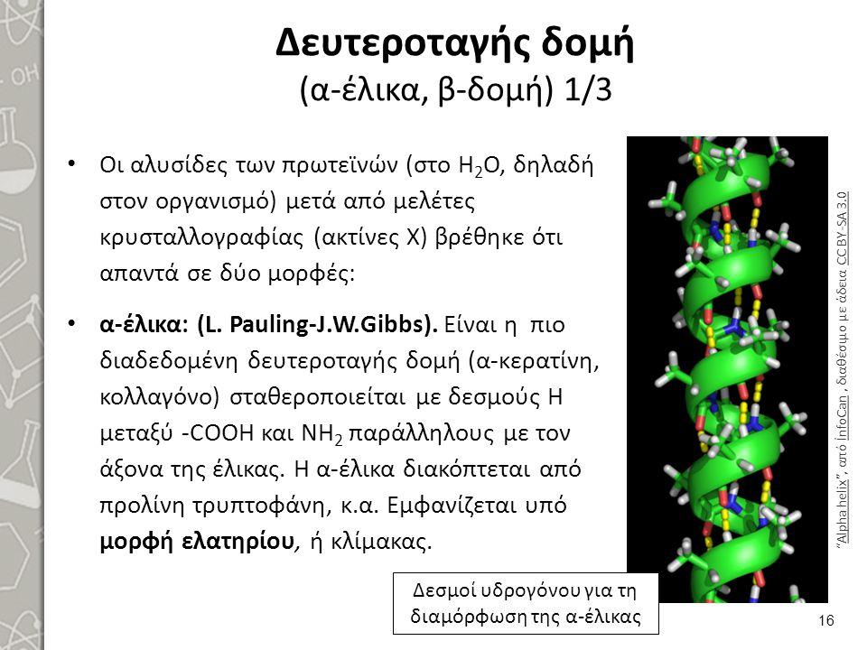 Δευτεροταγής δομή (α-έλικα, β-δομή) 1/3 Οι αλυσίδες των πρωτεϊνών (στο Η 2 Ο, δηλαδή στον οργανισμό) μετά από μελέτες κρυσταλλογραφίας (ακτίνες Χ) βρέ
