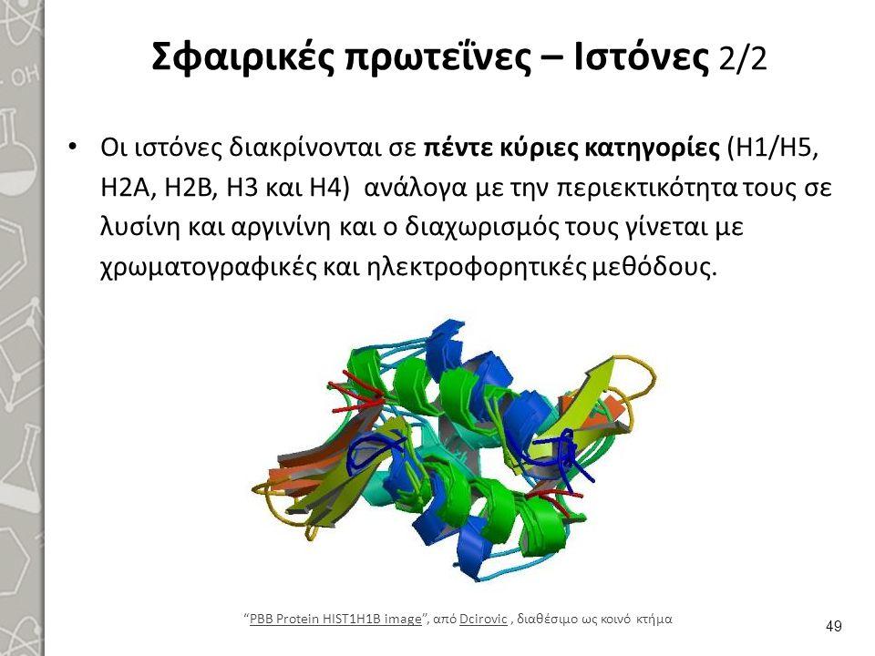 Σφαιρικές πρωτεΐνες – Ιστόνες 2/2 Οι ιστόνες διακρίνονται σε πέντε κύριες κατηγορίες (Η1/Η5, Η2Α, Η2Β, Η3 και Η4) ανάλογα με την περιεκτικότητα τους σ
