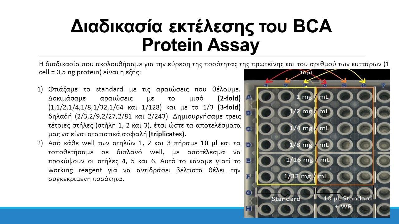 Διαδικασία εκτέλεσης του BCA Protein Assay Η διαδικασία που ακολουθήσαμε για την εύρεση της ποσότητας της πρωτεΐνης και του αριθμού των κυττάρων (1 ce