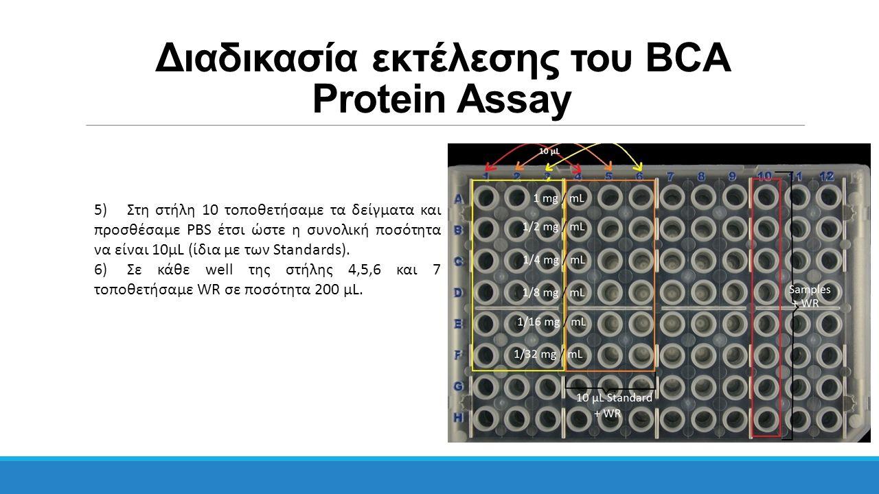 Διαδικασία εκτέλεσης του BCA Protein Assay 5)Στη στήλη 10 τοποθετήσαμε τα δείγματα και προσθέσαμε PBS έτσι ώστε η συνολική ποσότητα να είναι 10μL (ίδι