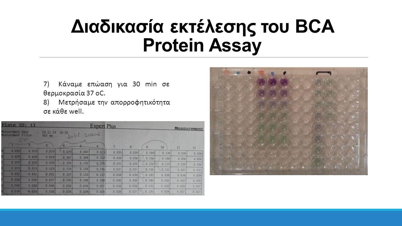 Διαδικασία εκτέλεσης του BCA Protein Assay 7)Κάναμε επώαση για 30 min σε θερμοκρασία 37 οC. 8)Μετρήσαμε την απορροφητικότητα σε κάθε well.