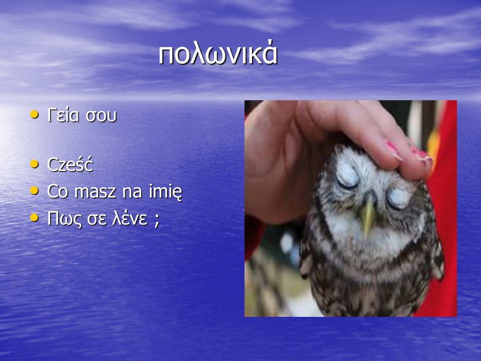 πολωνικά πολωνικά Γεία σου Γεία σου Cześć Cześć Co masz na imię Co masz na imię Πως σε λένε ; Πως σε λένε ;