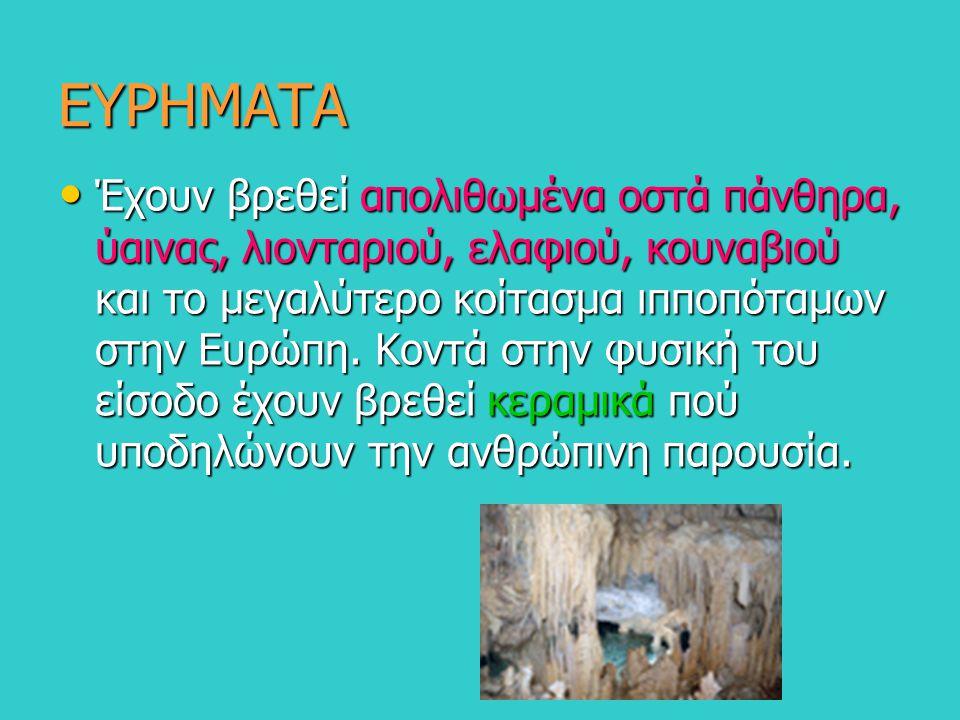 ΕΥΡΗΜΑΤΑ Έχουν βρεθεί απολιθωμένα οστά πάνθηρα, ύαινας, λιονταριού, ελαφιού, κουναβιού και το μεγαλύτερο κοίτασμα ιπποπόταμων στην Ευρώπη. Κοντά στην