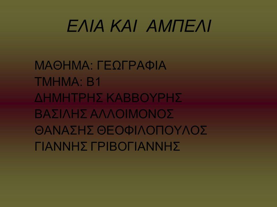 Η ελιά για τους αρχαίους Έλληνες ήταν σύμβολο των ολυμπιακών ιδεωδών, της Ειρήνης, της Σοφίας και της Νίκης.