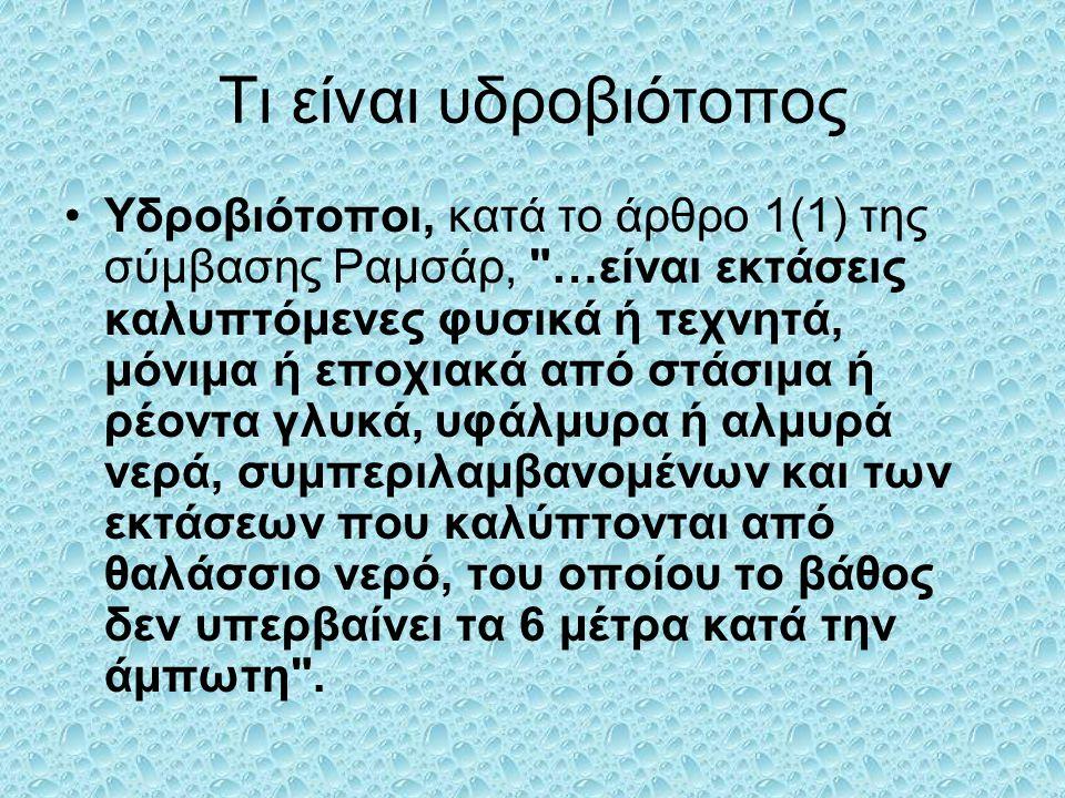 Ελληνικό Νομικό Πλαίσιο - Προστατευμένες Περιοχές Στην Ελλάδα, ο Εθνικός Δρυμός Ολύμπου ιδρύθηκε το 1938, βάσει του νόμου 856/37.