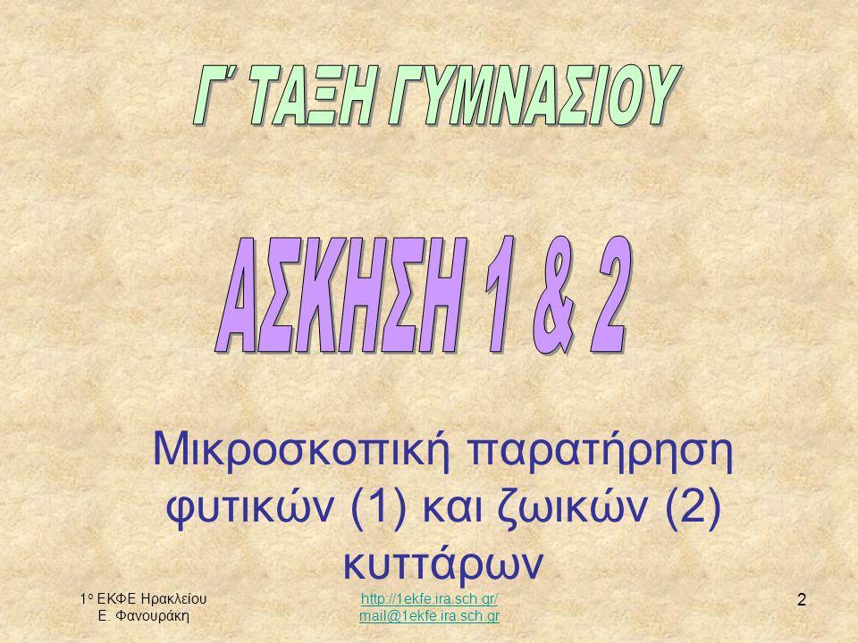 1 ο ΕΚΦΕ Ηρακλείου Ε. Φανουράκη http://1ekfe.ira.sch.gr/ mail@1ekfe.ira.sch.gr 3