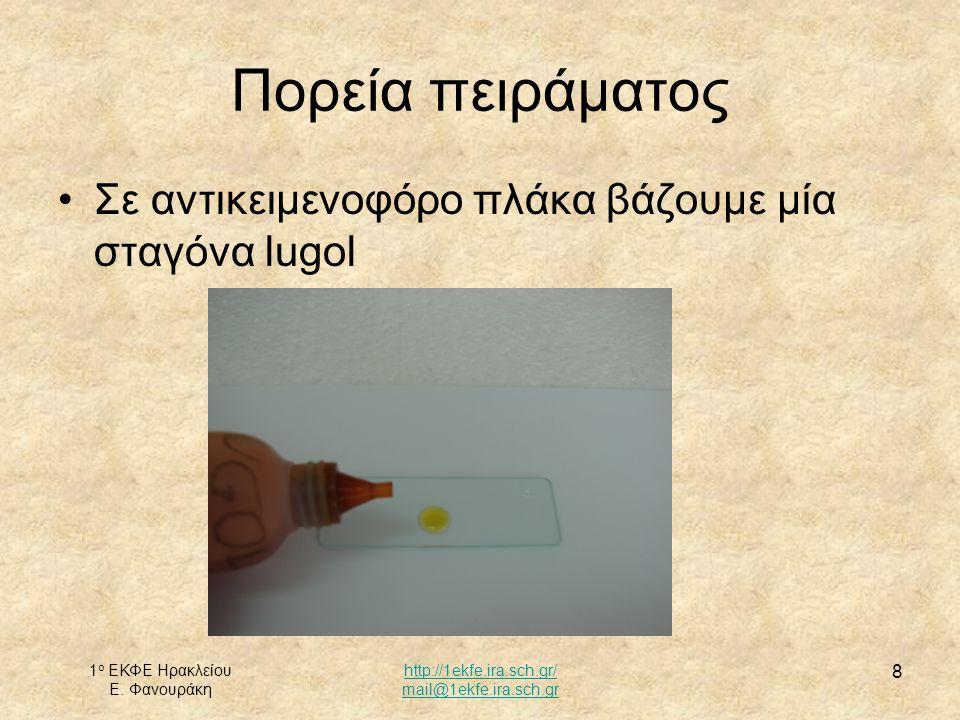 1 ο ΕΚΦΕ Ηρακλείου Ε. Φανουράκη http://1ekfe.ira.sch.gr/ mail@1ekfe.ira.sch.gr 8 Σε αντικειμενοφόρο πλάκα βάζουμε μία σταγόνα lugol Πορεία πειράματος