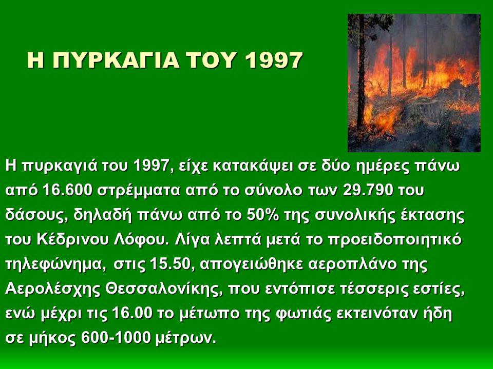 Η ΠΥΡΚΑΓΙΑ ΤΟΥ 1997 Η πυρκαγιά του 1997, είχε κατακάψει σε δύο ημέρες πάνω από 16.600 στρέμματα από το σύνολο των 29.790 του δάσους, δηλαδή πάνω από το 50% της συνολικής έκτασης του Κέδρινου Λόφου.