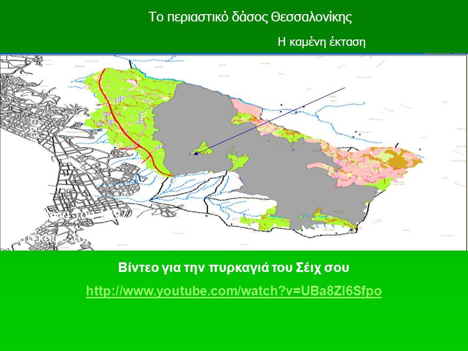 Θεσσαλονίκη Το περιαστικό δάσος Θεσσαλονίκης Η καμένη έκταση Η πυρκαγιά του 1997 Κατέκαψε 16,6 χιλ. στρ. Βίντεο για την πυρκαγιά του Σέιχ σου http://w