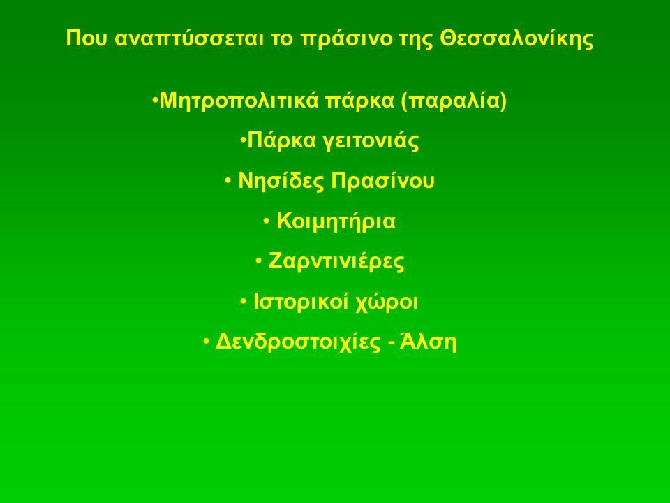 Που αναπτύσσεται το πράσινο της Θεσσαλονίκης Μητροπολιτικά πάρκα (παραλία) Πάρκα γειτονιάς Νησίδες Πρασίνου Κοιμητήρια Ζαρντινιέρες Ιστορικοί χώροι Δενδροστοιχίες - Άλση