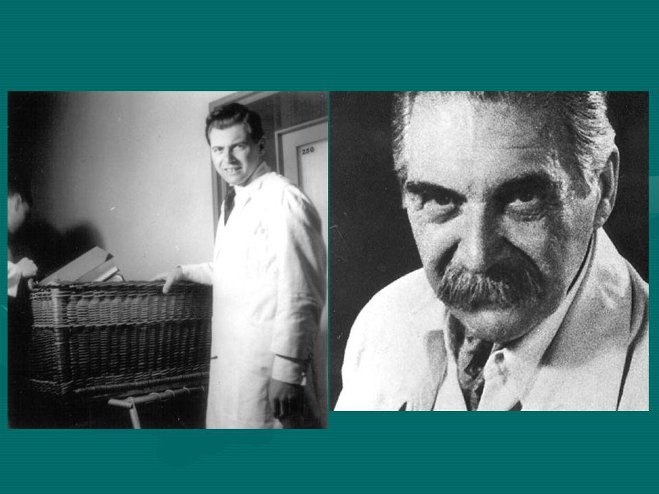 Βιογραφία Ο Γιόζεφ Μένγκελε ήταν Γερμανός γιατρός του στρατοπέδου συγκέντρωσης Άουσβιτς - Μπίρκεναου και διαβόητος ιδίως για τα πειράματα που έκανε με ανθρώπους, τα οποία οδηγούσαν συνήθως στο θάνατό τους.