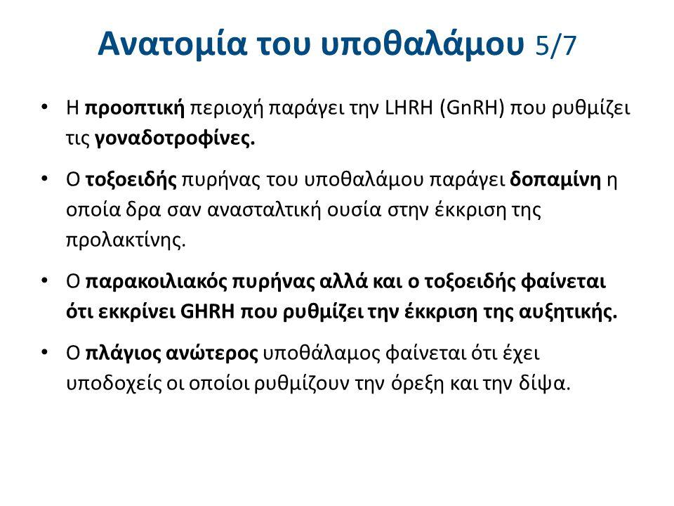 Ανατομία του υποθαλάμου 5/7 Η προοπτική περιοχή παράγει την LHRH (GnRH) που ρυθμίζει τις γοναδοτροφίνες. Ο τοξοειδής πυρήνας του υποθαλάμου παράγει δο