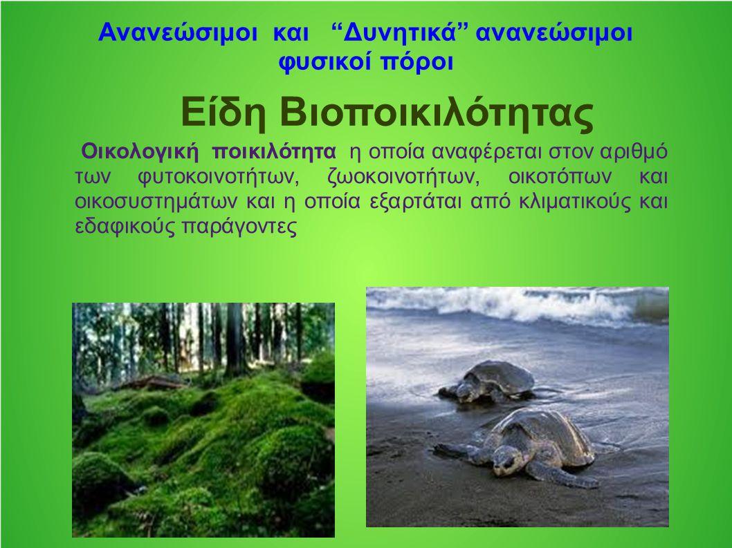 """Ανανεώσιμοι και """"Δυνητικά"""" ανανεώσιμοι φυσικοί πόροι Είδη Bιοποικιλότητας Οικολογική ποικιλότητα η οποία αναφέρεται στον αριθμό των φυτοκοινοτήτων, ζω"""