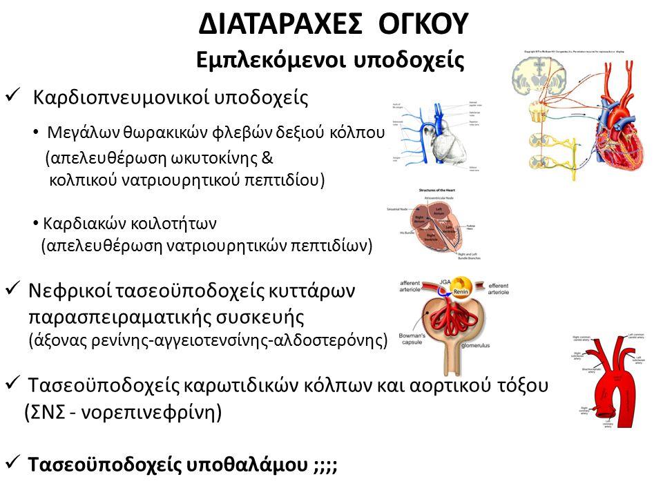 ΔΙΑΤΑΡΑΧΕΣ ΟΓΚΟΥ Εμπλεκόμενοι υποδοχείς Καρδιοπνευμονικοί υποδοχείς Μεγάλων θωρακικών φλεβών δεξιού κόλπου (απελευθέρωση ωκυτοκίνης & κολπικού νατριου