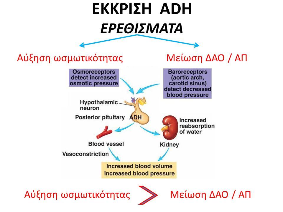 ΕΚΚΡΙΣΗ ADH ΕΡΕΘΙΣΜΑΤΑ Αύξηση ωσμωτικότητας Μείωση ΔΑΟ / ΑΠ Αύξηση ωσμωτικότηταςΜείωση ΔΑΟ / ΑΠ